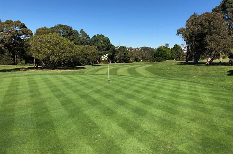 Golf Course Maintenance Services