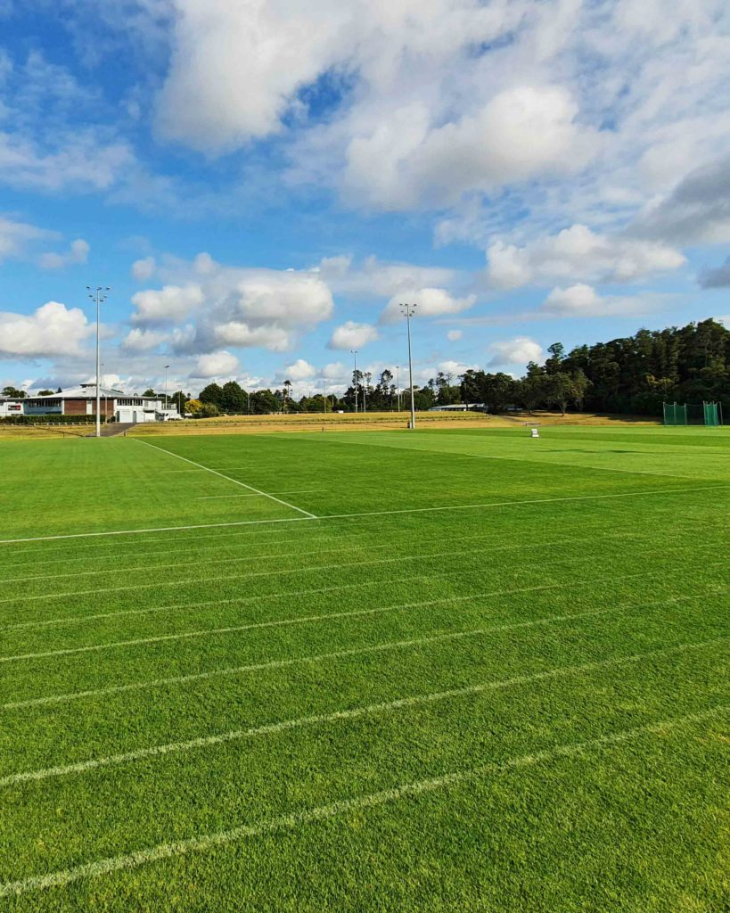 Sports turf for all clients