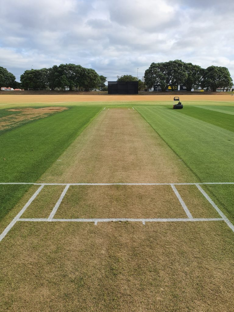 What a 1st Class Wicket Looks Like